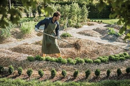 Oblici gredica i metode uzgoja