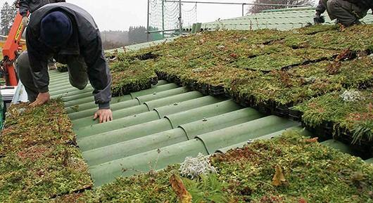 Permakultura u primjenjenom urbanom dizajnu