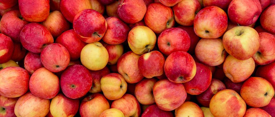 10 jako zanimljivih činjenica o (ne tako zanimljivim) jabukama!