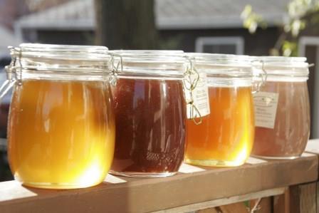 Koji med uzimati za određene tegobe? Za što su dobri propolis, matična mliječ i pelud?