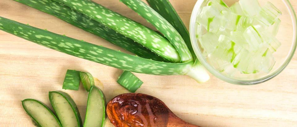 Aloe vera: 5 nevjerojatnih dobrobiti ove čudesne biljke