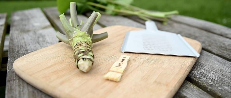 Wasabi – ukusan i zdrav japanski hren