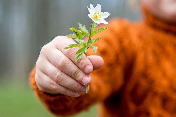 Davanjem se razvijate