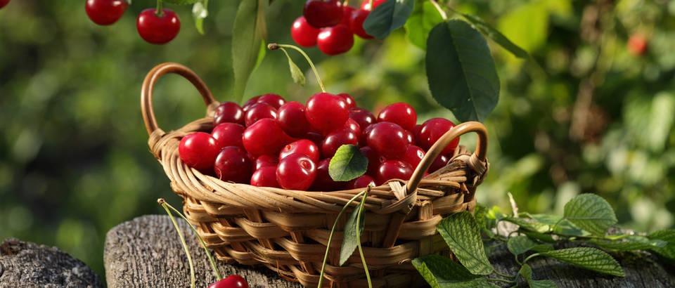 Jednostavni recepti s trešnjama koje morate probati!