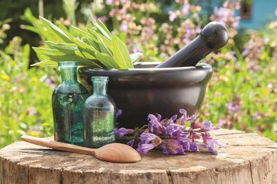 Klasična engleska homeopatija