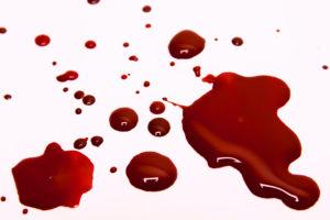 Krv govori sve ...