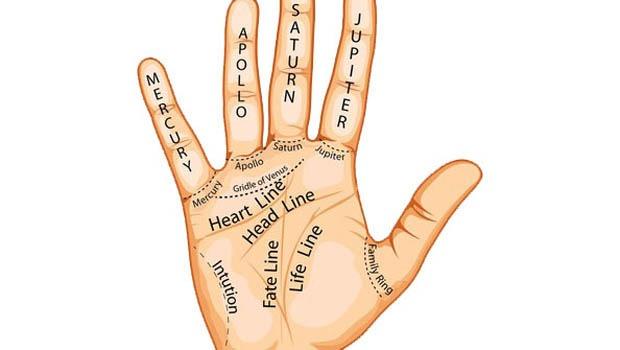 Želite znati čitati iz dlana? Ovo su osnove