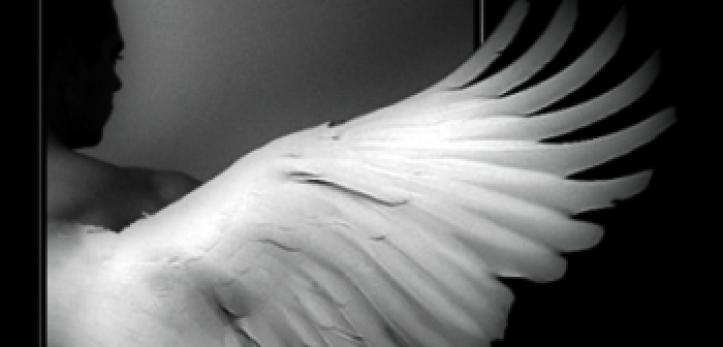 Anđeoska krila