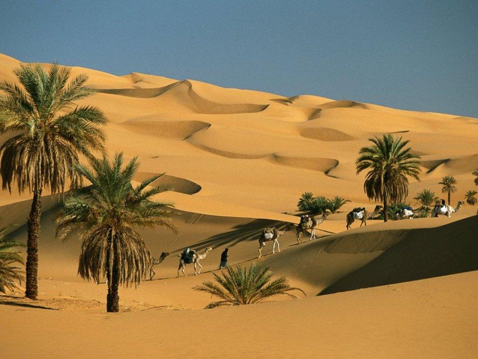 Očevi pustinje kao terapeuti