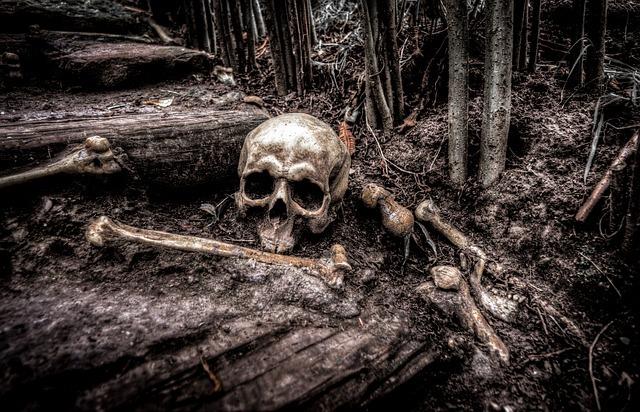 Velika Arkana Tarota: Što ako je Smrt rođenje?
