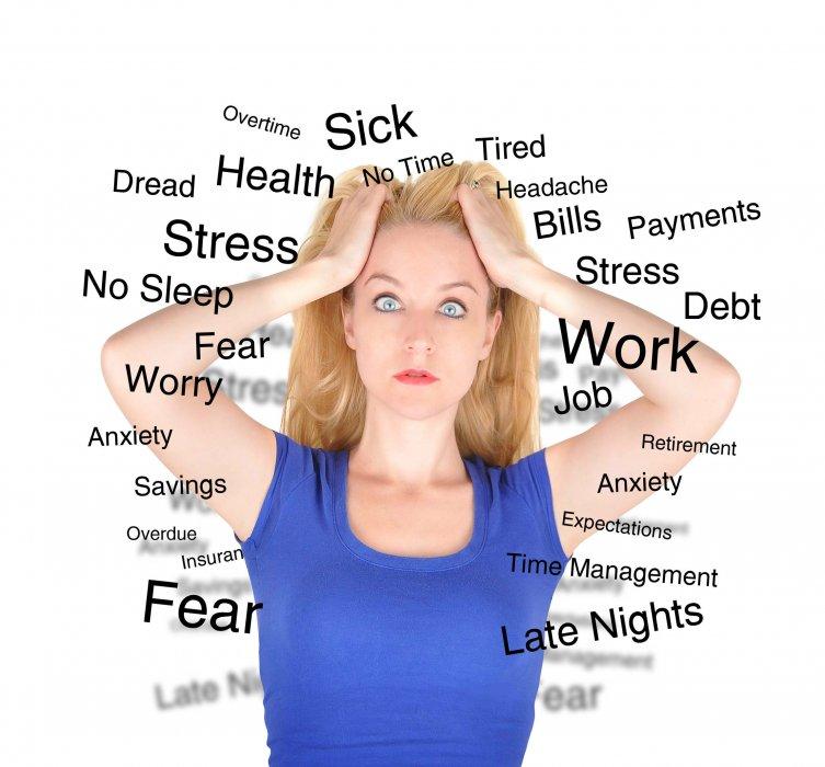FENOMEM STRESA - nastavak