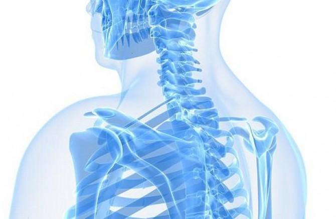 Zdrave kosti na prirodan način