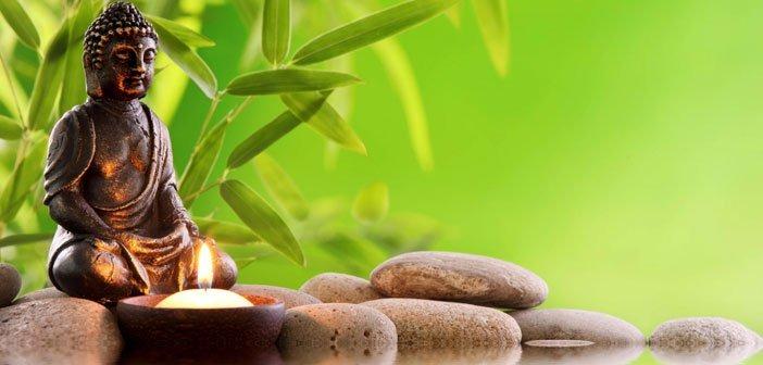 ZEN BUDIZAM - Uspon i razvoj zena 8