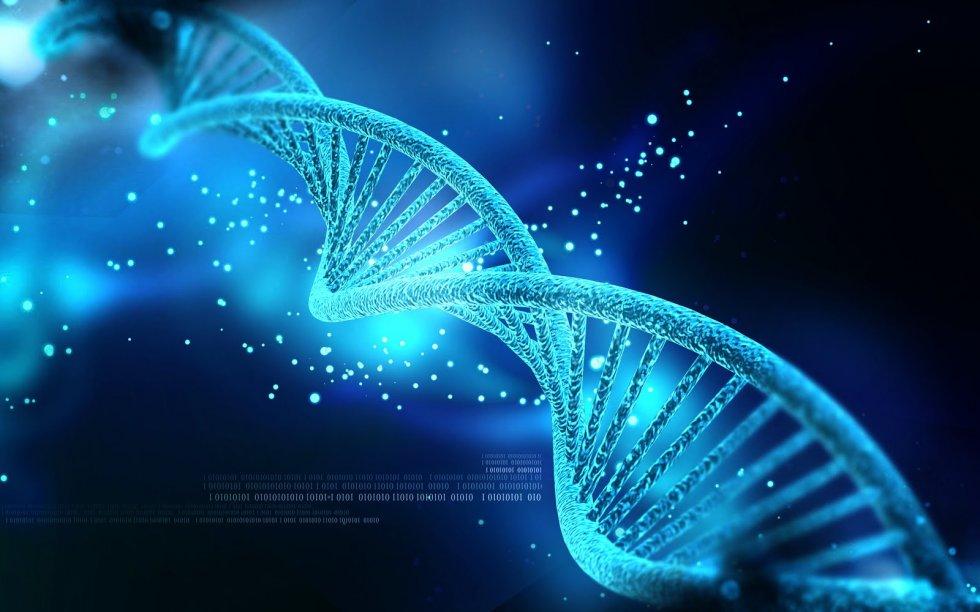 DNK I NJENA VAŽNOST