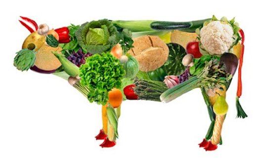 vegetarijanstvo 1
