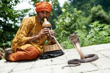 Hipnotiziranje zmija...ili...???