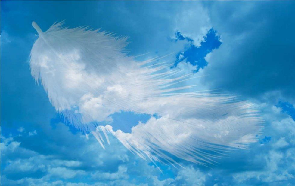 Anđeli i zanimanja