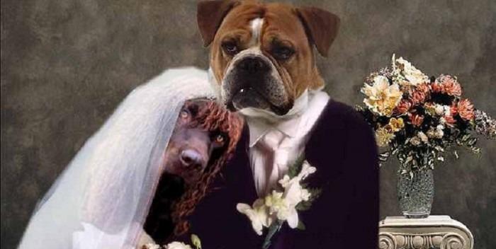 Povijest braka: Od vjenčanja u krčmi do tučnjave ribom po stopalima
