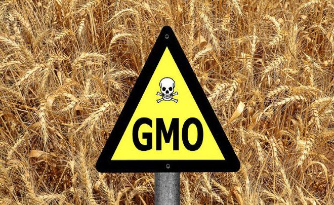 SVIJET PREMA MONSANTU ''' OTROVI, GMO, UNIŠTAVANJE