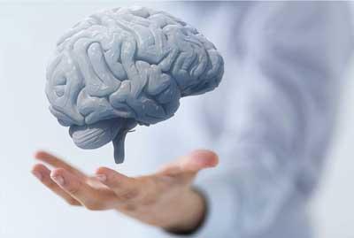 Mozak i ja