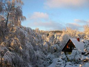 Finska zima