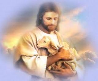 Zatajena je Isusova ljubav prema životinjama