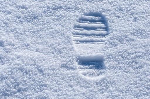 U snegu osta stopa