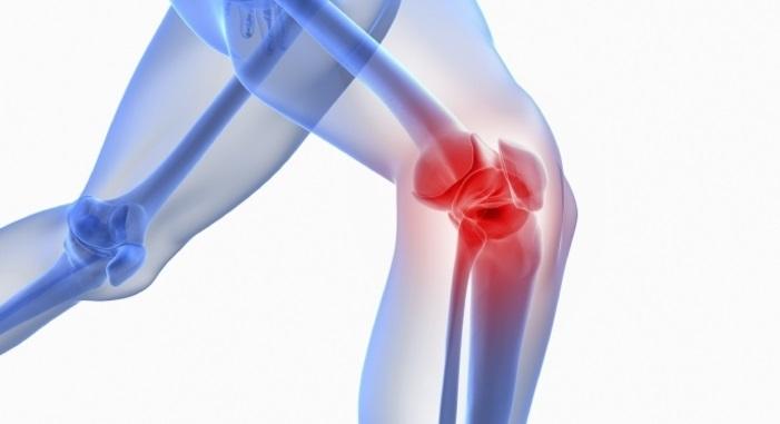 Regeneracija kostiju, mišića i nerava