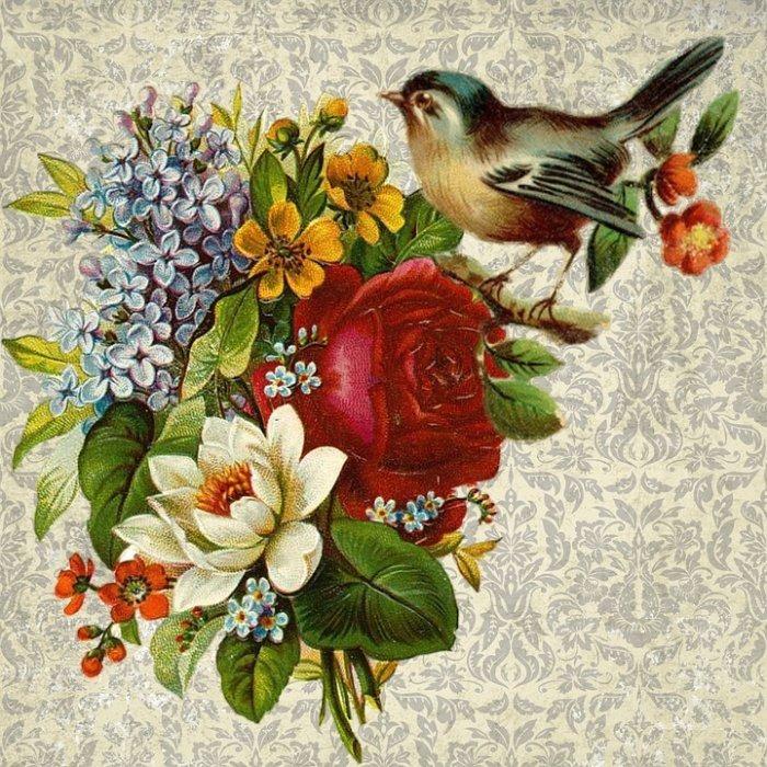 Za: ptica... :)
