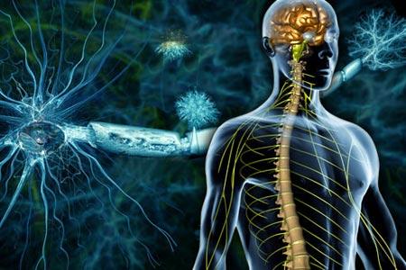 Oboljenja nervnog sistema - nastavak