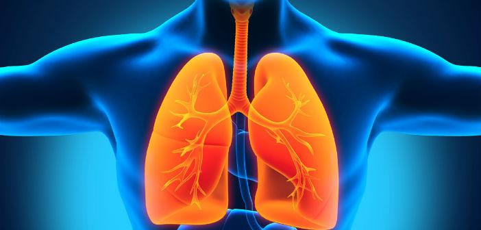 Emfizem i druga plućna oboljenja