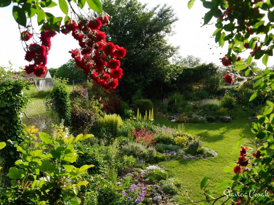 Vrt kao glazba