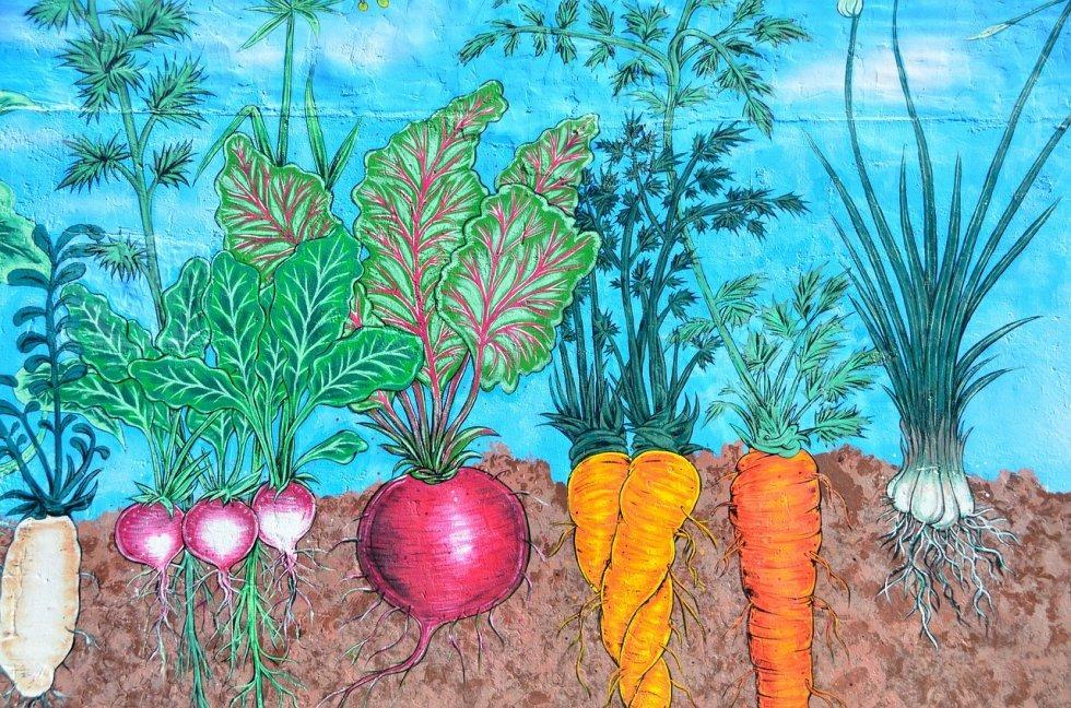 Tema mjeseca za travanj 2018g. - Vjerujete li u prirodni uzgoj hrane?