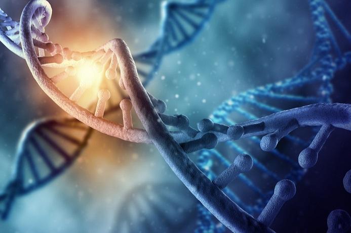Dalji simptomi aktivacije DNK