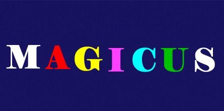 Poštivanje prava na privatnost na magicusu ili kako smo izgubili vrijednu autoricu...