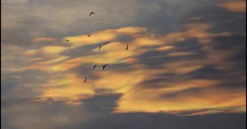 Večernji oblaci