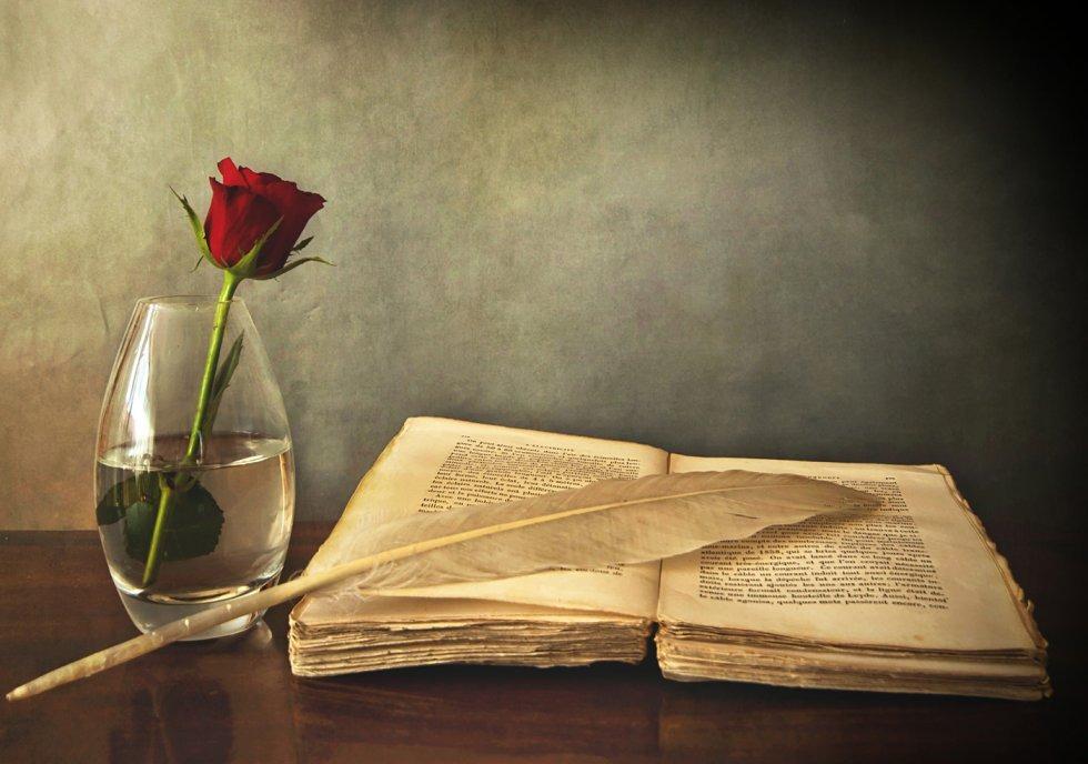 Čitanje u krevetu