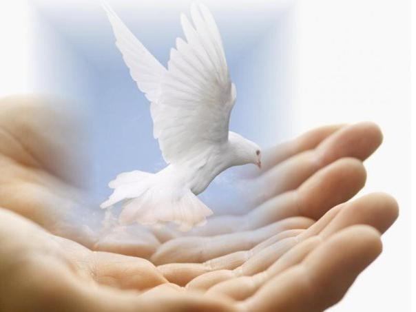Dobrota krasi čovjeka od Duha - 153 dan