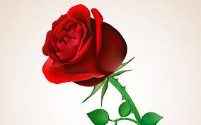 K.Gibran - Pjesma cvijeta