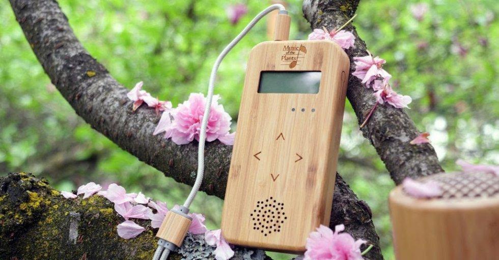 Bamboo, novi uređaj koji biljkama daje glas dolazi u Hrvatsku! Besplatna prezentacija muzike biljaka u kolovozu.