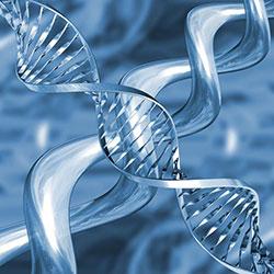 Aktiviranje, liječenje i prosvijetljenje DNA