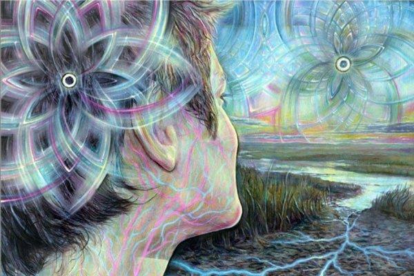 Svjesnost stvara stvarnost