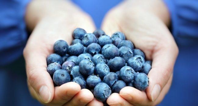 5 razloga da već danas pojedete šaku ovih bobica