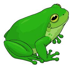 Priča o žabi i ...