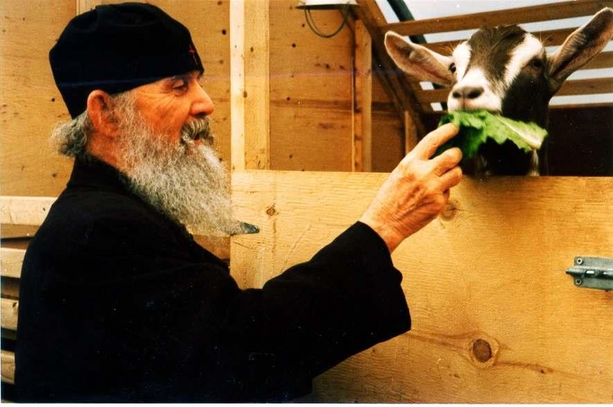 STARAC JEFREM (FILOTEJSKI I ARIZONSKI) OČINSKE POUKE