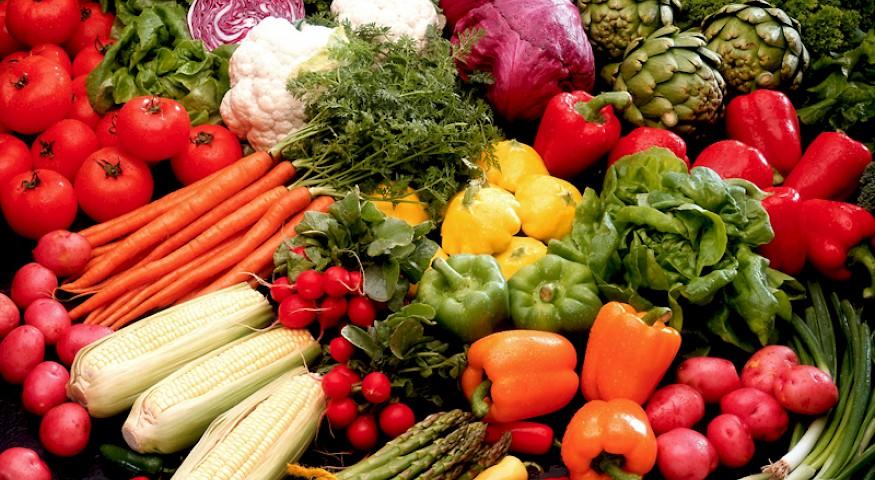 Skripta - Vegetarijanstvo