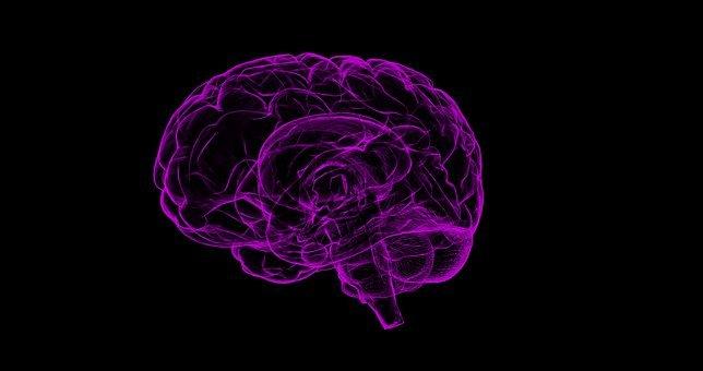 EKSPERIMENTALNA POTVRDA HOLOGRAFSKOM MOZGU