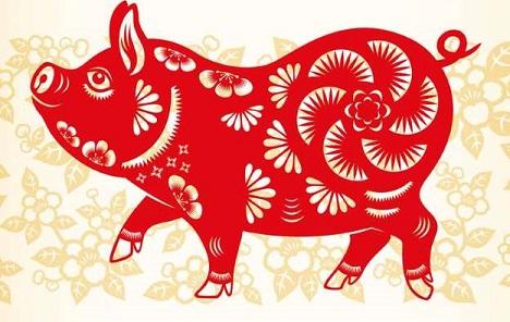 Kineski horoskop: Što donosi sretna godina zemljane svinje?
