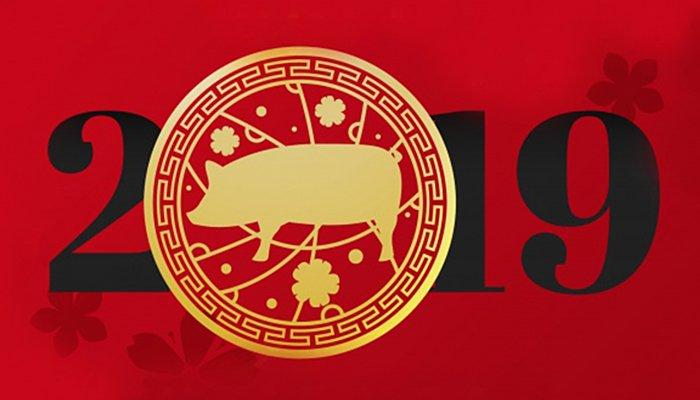 05.02. počinje prosperitetna godina ZEMLJANE SVINJE: Veliki kineski horoskop po znakovima