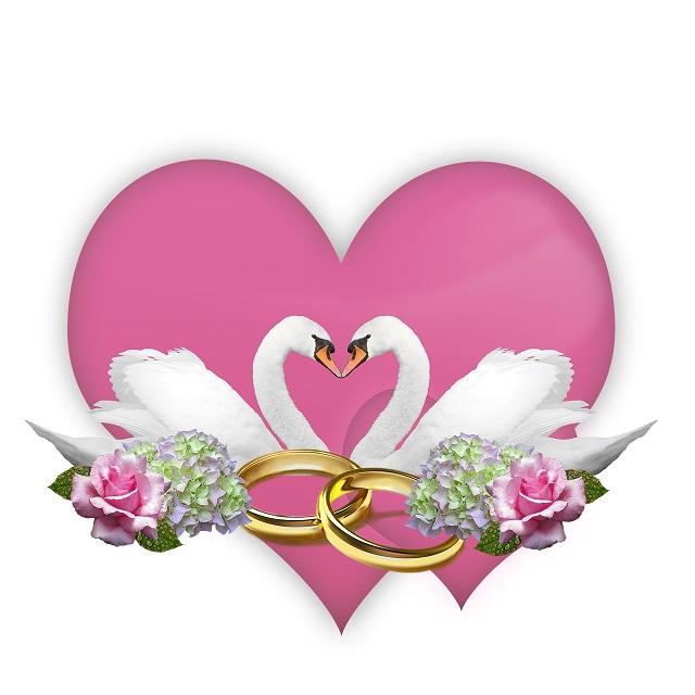 Zlatna zora u 23h: Svibanj, mjesec ruža i ljubavi - sve nijanse ljubavi